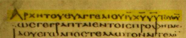 alexandrinus-marc1-11