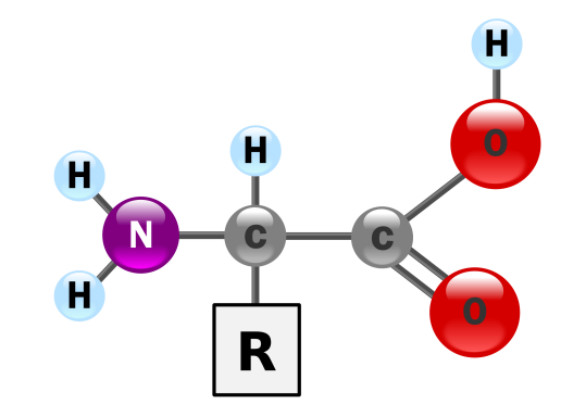 chemistry-of-life